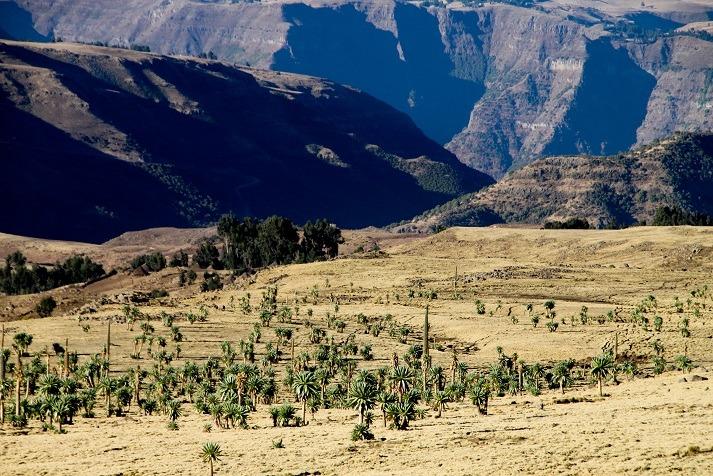 trekking en Ethipie sur mesure