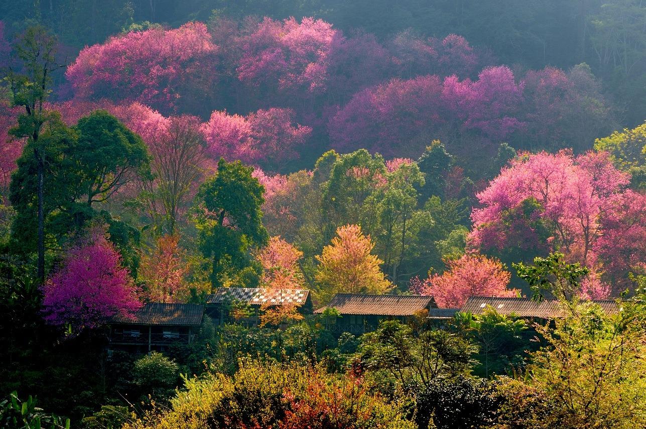 Séjour d'une semaine pour découvrir Pekin au départ de lyon