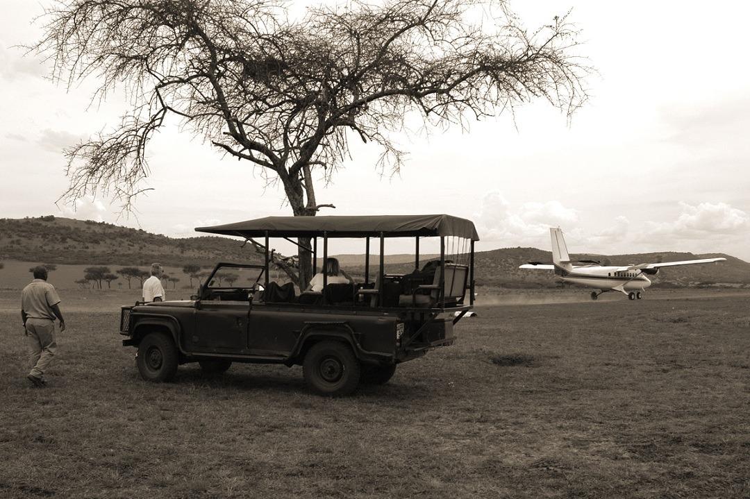 voyage dans le bush sud africain par esprit libre voyages sur mesure