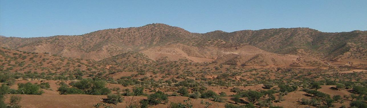 Élégances sahariennes